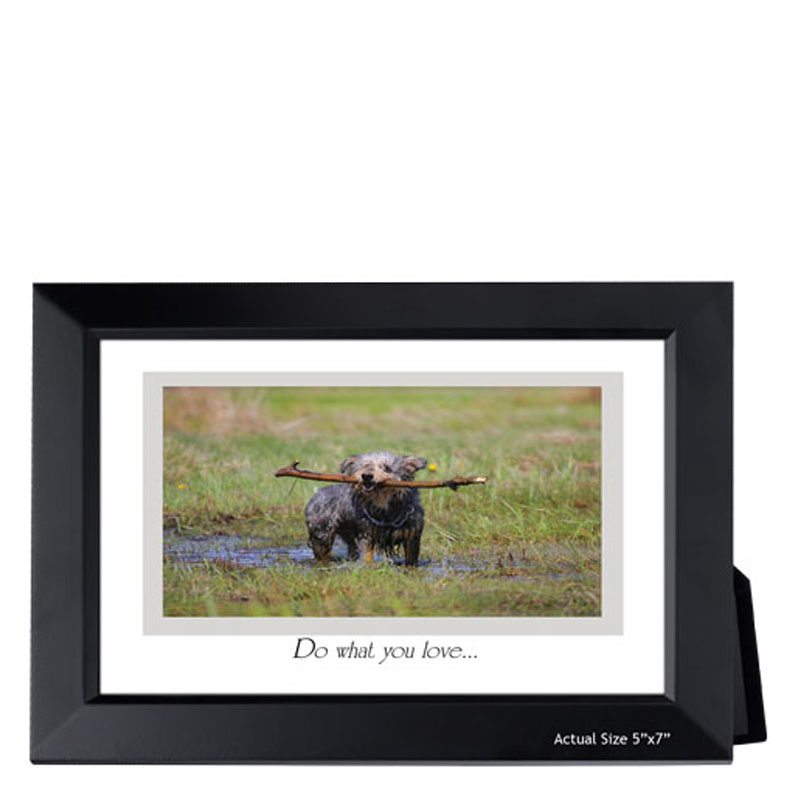 "5""x7"" Framed Inspiration - Do What You Love"
