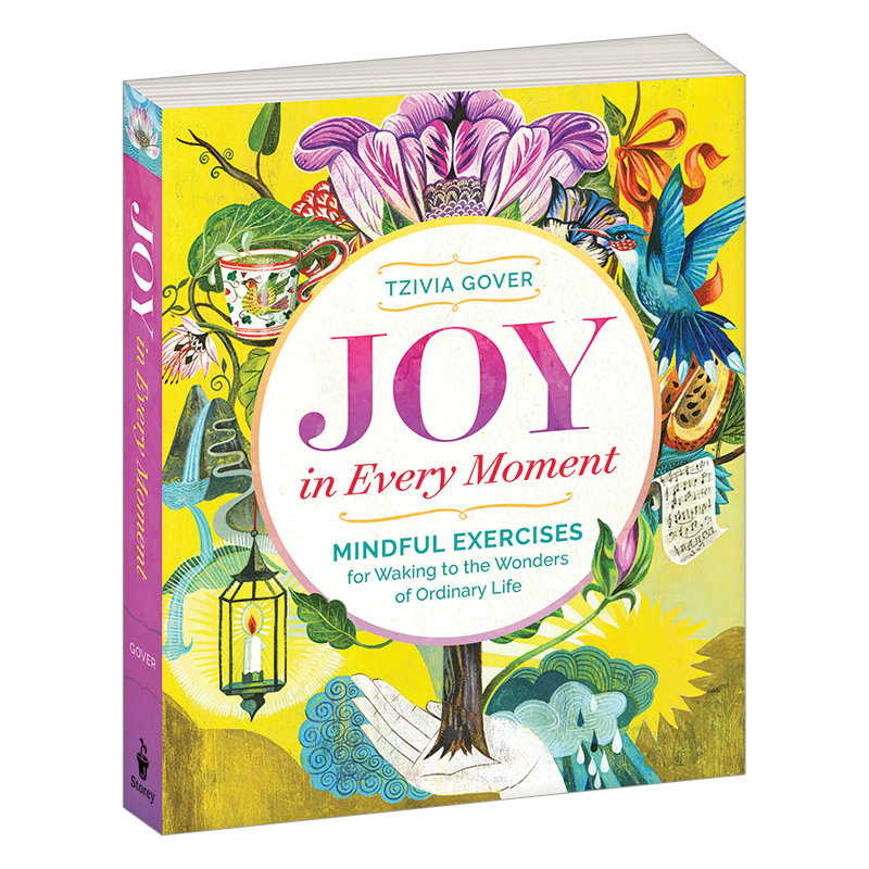 Joy in Every Moment Book
