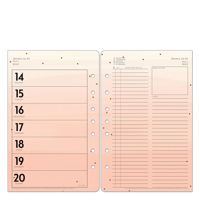 Classic Brushed Planner Love Ring-bound Weekly Planner - Jan 2019 - Dec 2019