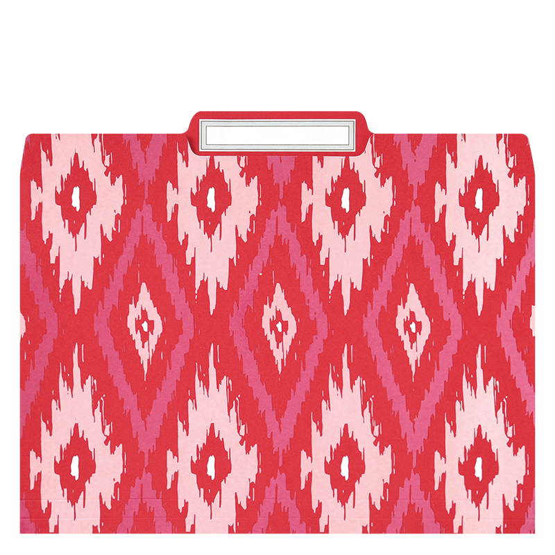 File Folder Set - Ikat