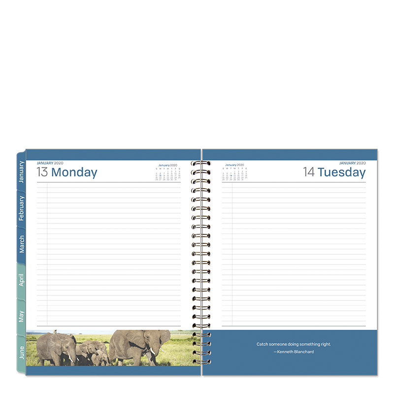 Monarch Leadership One-Page-Per-Day 6 Month Wire-bound Planner - Jan 2020 - Jun 2020