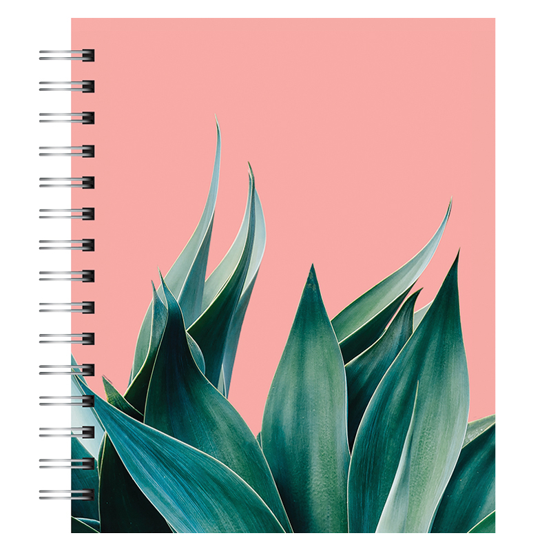 Spiral Medium Tabbed Notebook - Agave on Coral