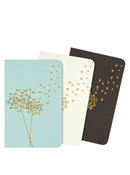 Jotter Notebooks