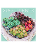 2020 Succulents Wall Calendar
